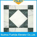 Elevatore domestico di Fushijia da vendere