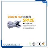 Le sofa de jeu de salle de séjour de modèles de maison de cuir véritable retirent le bâti de sofa