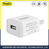 Mobile Phone 1.0A USB Wall Charger with Package