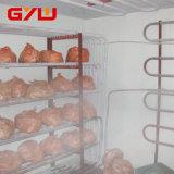 Quarto frio para a carne de peixes, quarto de armazenamento do quarto frio, armazenamento frio da carne