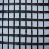 Fornitore/fornitore anticorrosivi di Geogrid Cina della vetroresina