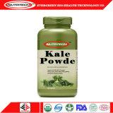 Poudre organique de haute qualité Kale Capsule avec des prix plus bas