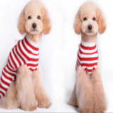 عيد ميلاد المسيح يحبك شريط كلب ملابس