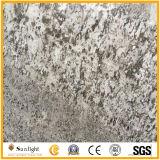 Популярные слябы Countertop кухни гранита цвета Bianco Antico серебряные