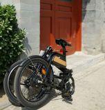 取り外し可能な電池20インチアルミニウムフレームのEバイクの折るバイク
