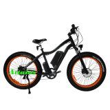 Motor DC 48V 750W de larga distancia E-Bici Bicicleta eléctrica de los neumáticos de grasa/Bicicleta eléctrica