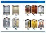 セリウムの承認(GRPN20)のVVVF駆動機構機械Roomlessの乗客の上昇のエレベーター