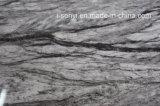 De marmeren Hoogste & Aangemaakte Eettafel van de Basis van het Roestvrij staal van het Glas Hoogste