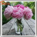 Fleurs chinoises en soie artificielle Trois pivoine tête pour décoration