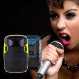 Altofalante plástico da projeção do karaoke do DJ do trole da fonte da fábrica com bateria