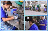 Prix usine de faisceau simple et triphasé d'acier de silicium de transformateur
