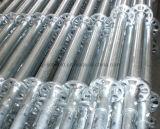 Леса Ringlock системы ремонтины гальванизированные сталью (TPCTSR001)