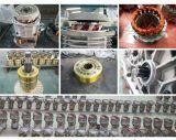 Minitype Hijstoestel van de Haak van 0.5 Ton het Tweeling met Enige Motor