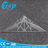 Plafond de découpage de laser et panneau de mur perforés en aluminium pour la décoration de construction