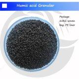 Extrait granulaire d'algue d'engrais organique