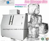 Eis-Verkaufsberater für im Freien eingesackten Eisspeicher