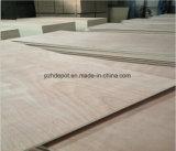 Álamos Core/Core/núcleo de madera de eucalipto para la venta de madera contrachapada