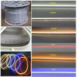 12V, 24V, 110V et 220V lumière au néon plate de corde du grand dos DEL