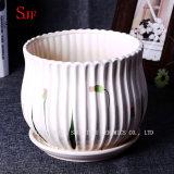 Maceta de cerámica moderna del plantador abundante