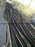 Flexibele RubberSlangen en Schakelaars voor Concrete Vibrators