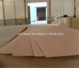 Contrachapado comercial especial de grado AA para muebles