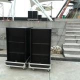 PROaudioSubwoofer für Zeile Reihen-Lautsprecher (FS-218)