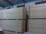 Kühlraum-Panel mit PU-Schaumgummi