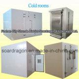 Cella frigorifera montata spaccata dell'unità di refrigerazione con i comitati ad alta densità
