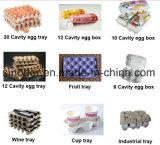 Resíduos de papel e celulose reciclada tabuleiro de ovos que a máquina/máquina de tabuleiro de ovos de pasta de papel