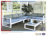 Мебель сада Wicker софы ротанга PE напольная (TG-067)