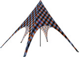 Tente neuve d'étoile de Gazebo d'événement de type de qualité à vendre