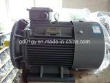 Мотор индукции высокой эффективности Beide Low-Voltage трехфазный