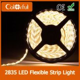 최신 판매 최고 가격 높은 CRI SMD2835 DC12V LED 지구