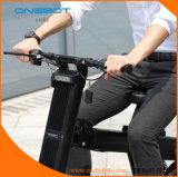 500WモーターPanasionic電池が付いている都市移動性の小型折りたたみの電気バイク