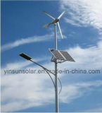 Light High 5m de Wind & Solar Hybrid Street Light