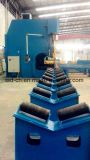 CNC отжимает тормоз в тандеме (2-WE67K-300/3200)