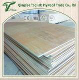 Shandong Bajo Grado de embalaje de madera contrachapada de uso
