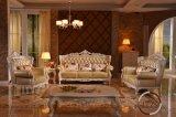 Insieme di legno del sofà di svago della mobilia moderna del salone