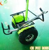 Carro de golfe com idéia a mais nova da função do balanço do auto