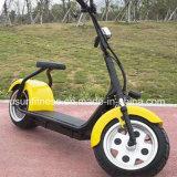 大人のためのアルミニウム車輪の電気オートバイの電気スクーターが付いているEバイク