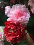 Chinese blüht Hauptpfingstrose der Kunstseide-drei für Dekoration