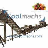 Frutas e produtos hortícolas ultracongelados/Linha a linha de produção de processamento de alimentos