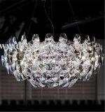 Iluminação projectos venda quente luz penduradas em países estrangeiros