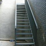 Горячая окунутая гальванизированная лестница трапа стальной структуры стальная (SSWS-003)