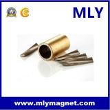 방사선 NdFeB 영원한 네오디뮴 철 붕소 자석 (MLY085)