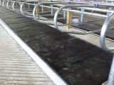 Снабженная подкладкой животная циновка конюшни лошади рогожки коровы/лошади циновок Antifatigue резиновый