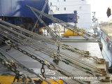 De gegalvaniseerde Geselende Staaf van de Container van het Staal van de Legering Lange