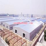 Azienda agricola di pollo di Qingdao Hapy con strumentazione automatica