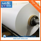 Rouleau blanc feuille PVC rigide pour le formage sous vide Le bac