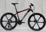 Алюминиевый сплав колеса рамы горного велосипеда (FP-MTB-A001)